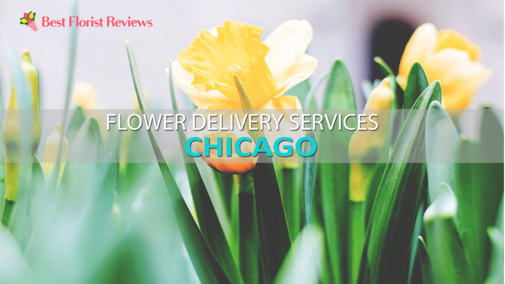 BEST FLOWER DELIVERY CHICAGO