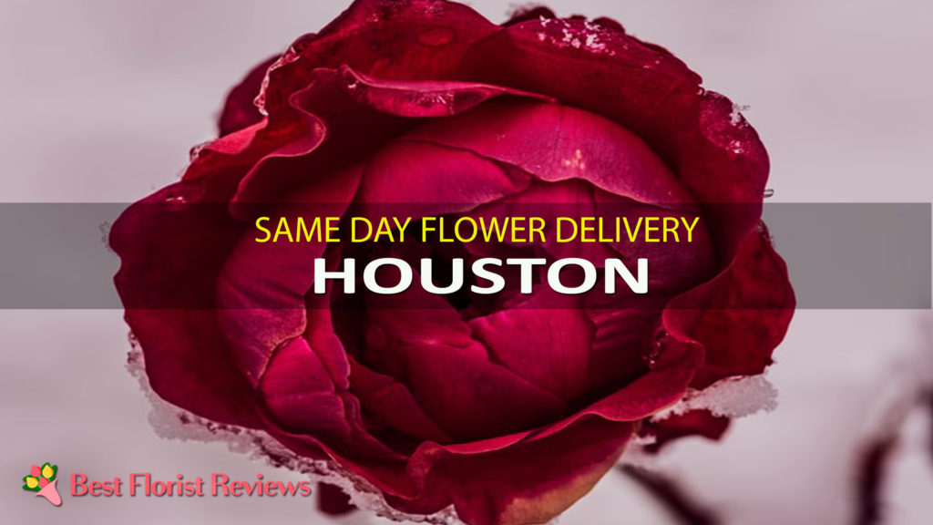SAME DAY DELIVERY HOUSTON
