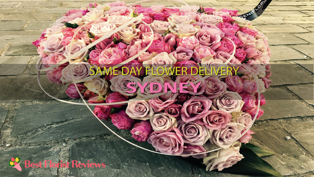 SAME DAY DELIVERY SYDNEY