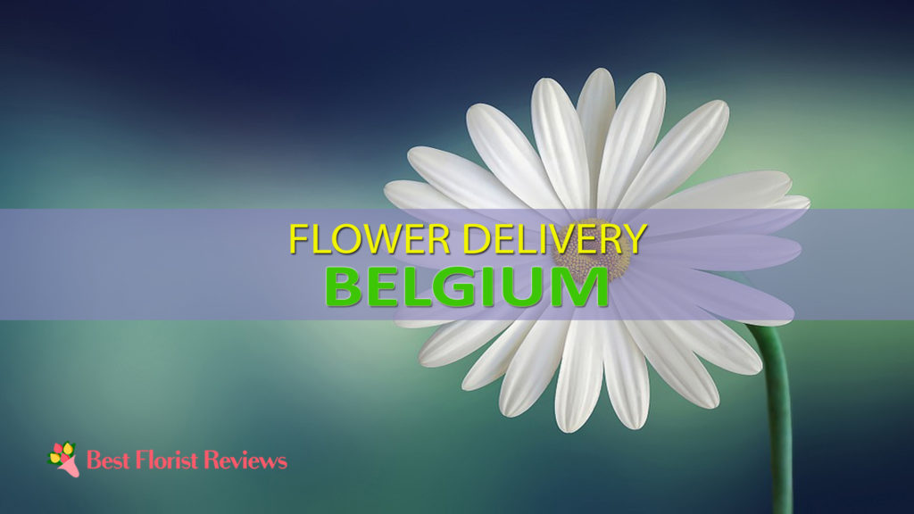 BEST FLOWER DELIVERY BELGIUM