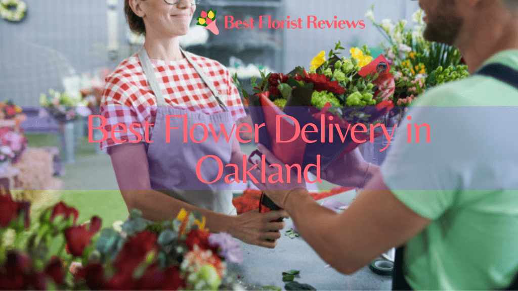 Best Options for Flower Delivery in Oakland