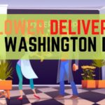 Best Flower Delivery in Washington DC